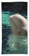 White Beluga Whale 1 Bath Towel