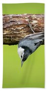 White-breasted Nuthatches Bath Towel