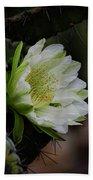 White Cactus Flower  Bath Towel