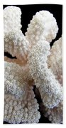 White Coral Hand Towel