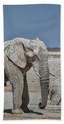 White Elephants Bath Towel