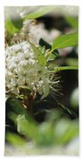 White Flowers On Canvas Hand Towel