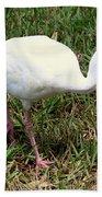 American White Ibis Bird Bath Towel