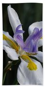 White Orchid With Yellow And Purple Bath Towel