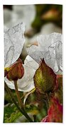 White Paper Petals Bath Towel