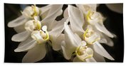 White Phalaenopsis Blossom Bath Towel