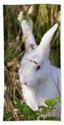 White Rabbit Bath Towel