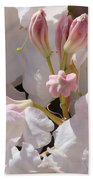 White Rhodies Pink Rhododendrons Flowers Art Prints Canvas Botanical Baslee Troutman Bath Towel