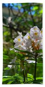 White Rhododendron Blooms Bath Towel