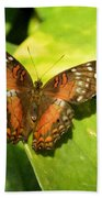 White Spotted Butterfly Bath Towel
