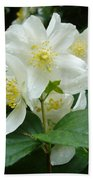 White Spring Blossom Bath Towel