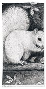 White Squirrel Hand Towel