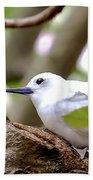 White Terns Koa And Parent...bird Love Bath Towel