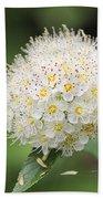 White Wild Flower Bath Towel
