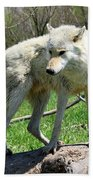 White Wolf 3 Bath Towel