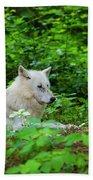 White Wolfe Bath Towel