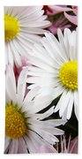 White Yellow Daisy Flowers Art Prints Pink Blossoms Bath Towel