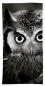 Whitefaced Owl Hand Towel by Johan Swanepoel