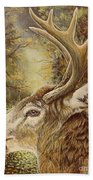 Whitetail Hideaway Hand Towel