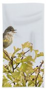 Whitethroat  Bath Towel