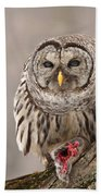Wild Barred Owl With Prey Bath Towel