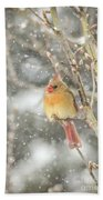 Wild Birds Of Winter - Female Cardinal In The Snow Bath Towel