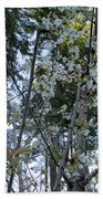 Wild Cherry Tree Blossoms On Verona Bath Towel
