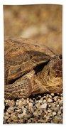 Wild Desert Tortoise Saguaro National Park Bath Towel
