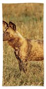 Wild Dog Of Botswana Bath Towel