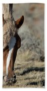 Wild Horse Hand Towel by Frank Madia