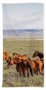 Wild Horse Mesa Bath Towel