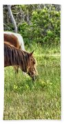 Wild Horses Of Assateague 5 Bath Towel