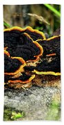 Wild Mushrooms Growing On Tree Trunk Bath Towel