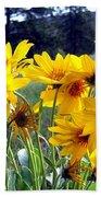 Wild Okanagan Sunflowers Bath Towel
