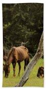 Wild Ponies In Corolla Bath Sheet