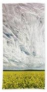Wild Winds Bath Sheet by Matt Molloy