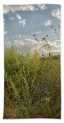 Wildflowers Of Chaco Bath Towel
