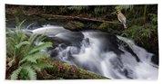 Wilson Creek #18 With Added Cedar Waxwing Bath Towel