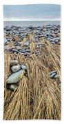 Windswept Grass At Lawrencetown Beach, Nova Scotia Bath Towel