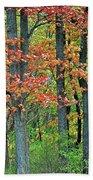 Windy Day Autumn Colors Bath Towel