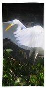 Wings Of An Angel Bath Towel