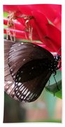 Wings Of Brown - Butterfly Bath Towel