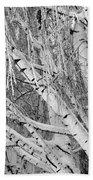 Icy Winter Birch Tree  Bath Towel