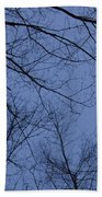 Winter Blue Sky Bath Towel