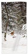 Winter Doe In The Upper Peninsula Bath Towel