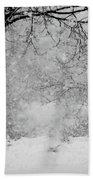 Winter Dream Bath Towel