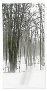 Winter Fog Bath Towel