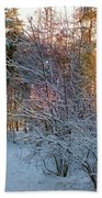 Winter Forest Bath Towel