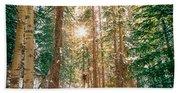 Winter Forest Sunshine Bath Towel