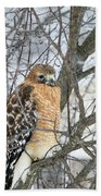 Winter Hawk Bath Towel